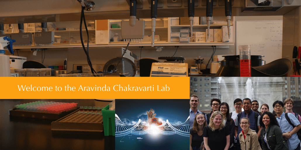 Chakravarti Lab - Aravinda Chakravarti Lab